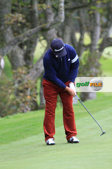 Damien McGrane (IRL) during Round 2 of the Alfred Dunhill Links Championship at Kingsbarns Golf Club on Friday 27th September 2013.<br /> Picture:  Thos Caffrey / www.golffile.ie