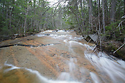 Ledge Brook in the Livermore, New Hampshire during the spring months. This brook is located off of the Kancamagus Scenic Byway.