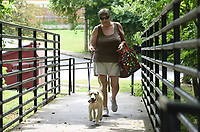 NWA Democrat-Gazette/DAVID GOTTSCHALK Margaret Choffel walks Buttercup Wednesday, August 7, 2019, over to the Yvonne Richardson Community Center for a game of pickle ball. Choffel received Buttercup after the dog and her siblings were found on the side of the road near Huntsville.