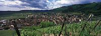 Europe/France/Alsace/68/Haut-Rhin/Riquewihr : Le village et le vignoble Schoenenbourg