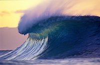 Wave at sunset, off the wall sandbar Oahu, Hawaii