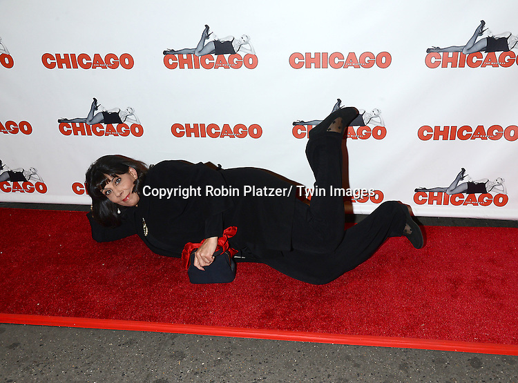 """Christine Pedi attends """"Chicago""""  becoming the 2nd Longest Running Show on Broadway at performance 7486 on November 23, 2014 at the Ambassodor Theatre in New York City."""