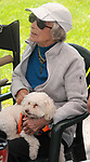 Matriarch of the Kreda family, Sallie Kreda, seen babysitting a patrons puppy, at the Grey Mouse Farm booth at the Saugerties Farmer's Market on Main Street in the Village of Saugerties, NY, on Saturday, June 10, 2017. Photo by Jim Peppler. Copyright/Jim Peppler-2017.