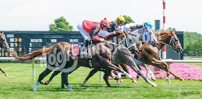 T'as d'Beaux Yeux winning at Delaware Park on 7/18/15