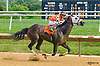 Bher In The Woods winning at Delaware Park on 7/7/16