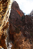 USA, Utah, Springdale, Zion National Park, Weeping Rock
