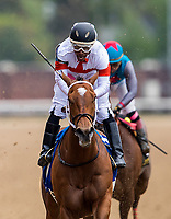 LOUISVILLE, KY - MAY 04: Ricardo Santana yells in celebration after winning the Eight Belles Stakes aboard Mia Mischief #3 at Churchill Downs on May 4, 2018 in Louisville, Kentucky. (Photo by Alex Evers/Eclipse Sportswire/Getty Images)