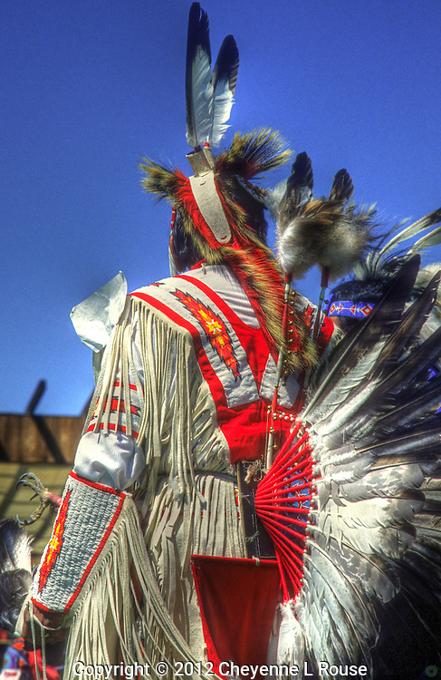 Lone Fancy Dancer - Wyoming<br /> Color