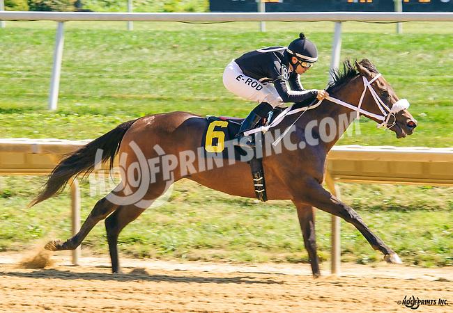 R Angel Katelyn winning at Delaware Park on 9/22/16