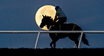 "December 12, 2019 : Horses exercise at the Fair Hill Training Center as the ""Cold Moon"" marks the last full moon moonset of the decade on December 12, 2019 in Fair Hill, Maryland. Scott Serio/Eclipse Sportswire/CSM"