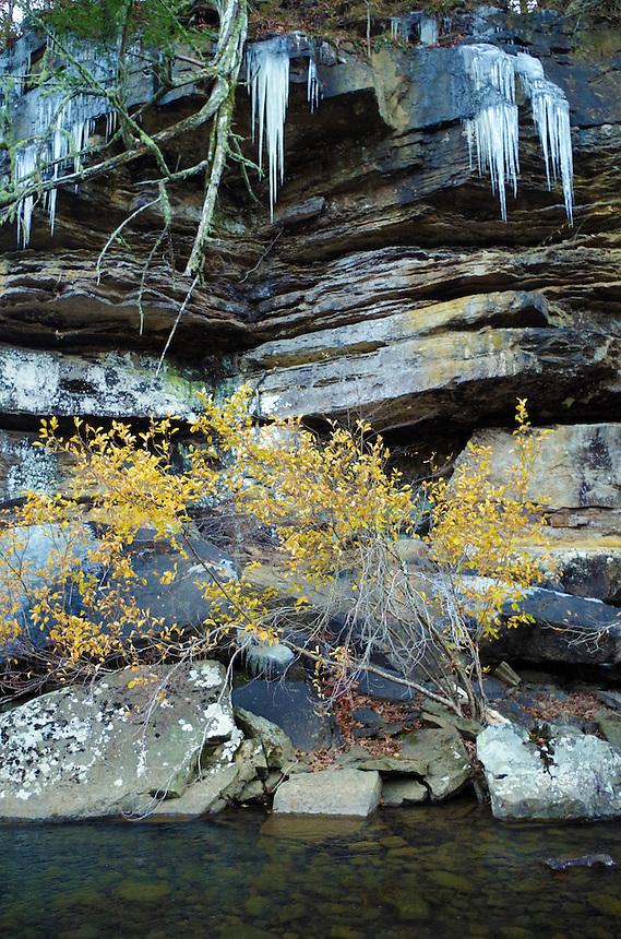 Autumn scene on Fall Creek in the Ozark National Forest near Cedarville, Arkansas