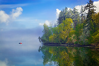 Vashon-Maury Island<br /> Clearing morning fog on Quartermaster Harbor with forest edge reflections