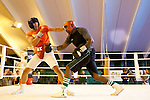 07.06.2011, Stanglwirt, Going, AUT, Wladimir Klitschko, Training, im Bild Wladimir Klitschko im Ring mit Sparring Partner. EXPA Pictures © 2010, PhotoCredit: EXPA/ J. Groder