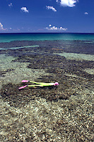 Woman (MR) snorkeling over a shallow reef in Cayman Brac, Cayman Island