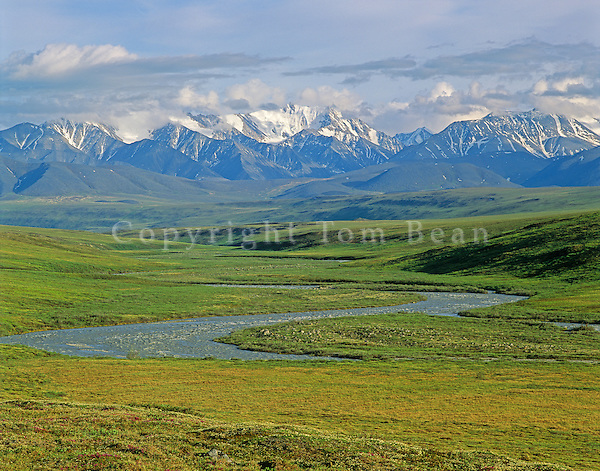 Jago River flows onto the Arctic Coastal Plain from the Romanzof Mountains, a part of the Brooks Range in the Arctic National Wildlife Refuge, Alaska, AGPix_0717.