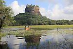 Elephant ride in lake by rock palace, Sigiriya, Central Province, Sri Lanka, Asia