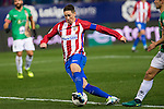 Atletico de Madrid's Fernando Torres during the match of &quot;Copa del Rey&quot; between Atletico de Madrid and Gijuelo CF at Vicente Calderon Stadium in Madrid, Spain. december 20, 2016. (ALTERPHOTOS/Rodrigo Jimenez) <br /> -