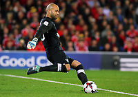 Darren Randolph of Ireland kicks the ball forward during the FIFA World Cup Qualifier Group D match between Wales and Republic of Ireland at The Cardiff City Stadium, Wales, UK. Monday 09 October 2017