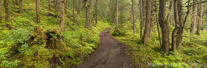Lost Lake Trail, Chugach National Forest, Alaska