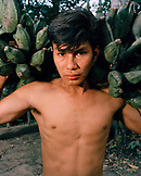 PERU, Amazon Rainforest, South America, Latin America, portrait of a young man carrying bananas