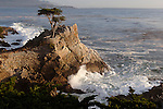 """Pacific Cypress""  17 Mile Drive- Pebble Beach, California.  The famous Lone Cypress Tree on the Pacific Ocean with the waves crashing into the coastline. I took this photograph and had to leave to pick some friends up at the airport in San Francisco.  The sunset colors eventually developed into the image titled ""Monet on Monterey"" ..... which I captured by pulling off the highway and racing to the beach just in time .... arghhhhh"