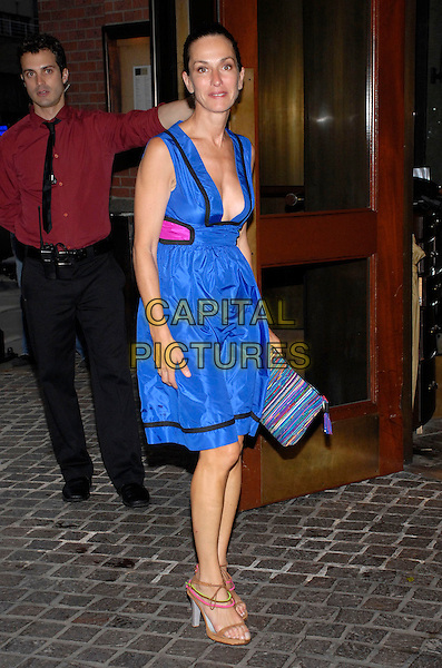 "CYNTHIA ROWLEY.The Cinema Society and Dior Beauty present a screening of Sony Picture Clasics' ""Interview"" at the Tribeca Grand Hotel Screening Room, New York City, New York, USA,.11 July 2007..full length blue low cut dress cleavage.CAP/ADM/BL.©Bill Lyons/AdMedia/Capital Pictures. *** Local Caption ***"