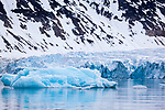 Waggonwaybreen, an output glacier debouching into Magdalenefjorden, an 8km long, 5km wide fjord on the west coast of Spitsbergen, in the Arctic archipelego of Svalbard. Large cruise ships regularly enter the fjord. However, heavy fuel oil, which is used in many ships, is banned in Magdalenefjorden. However, Magdalenefjorden is regarded as having being sacrificed to tourism to protect other areas of Svalbard.
