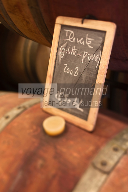 Europe/France/Aquitaine/33/Gironde/Margaux: Ile Margaux - Domaine de l'Ile Margaux Domaine viticole - AOC Bordeaux Supérieur - Vin de l'Ile Verte