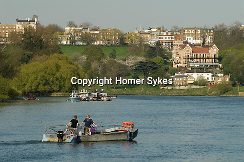 Hammertons Ferry across River Thames at Richmond. It crosses from near Ham House in Ham to near Marble Hill House in Twickenham London. UK