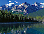 Banff National Park, Canada<br /> Mounts Temple and Lefroy of the Bow Range in morning sun reflected on Herbert Lake in the Candian Rockies