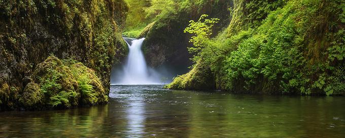 Soft light highlights lush greens, Punchbowl Falls.