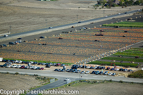 aerial photograph pumpkin sale, Adobe Farms, Petaluma, Sonoma county, California