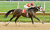 Today's Man winning at Delaware Park on 10/3/12