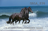 Bob, ANIMALS, collage, horses, photos(GBLA638,#A#) Pferde, caballos