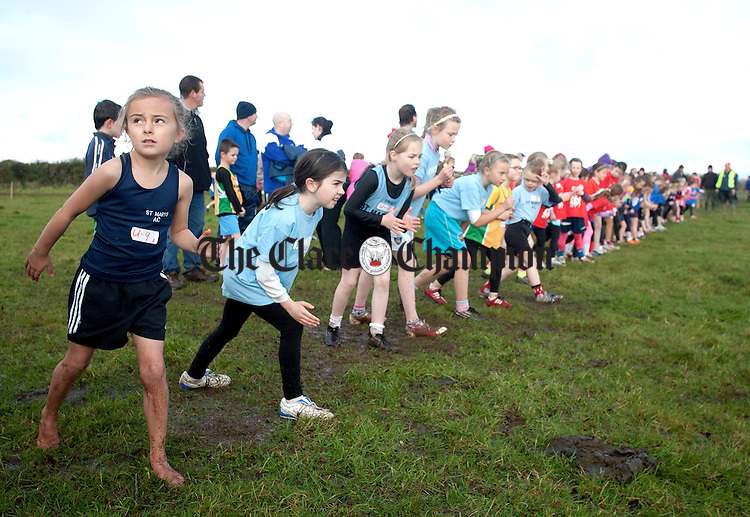041112.8 year old Grace McKiernan,St Marys AC, waiting for the off in the Girls U9 race at Kilnaboy Cross Country on Sunday.
