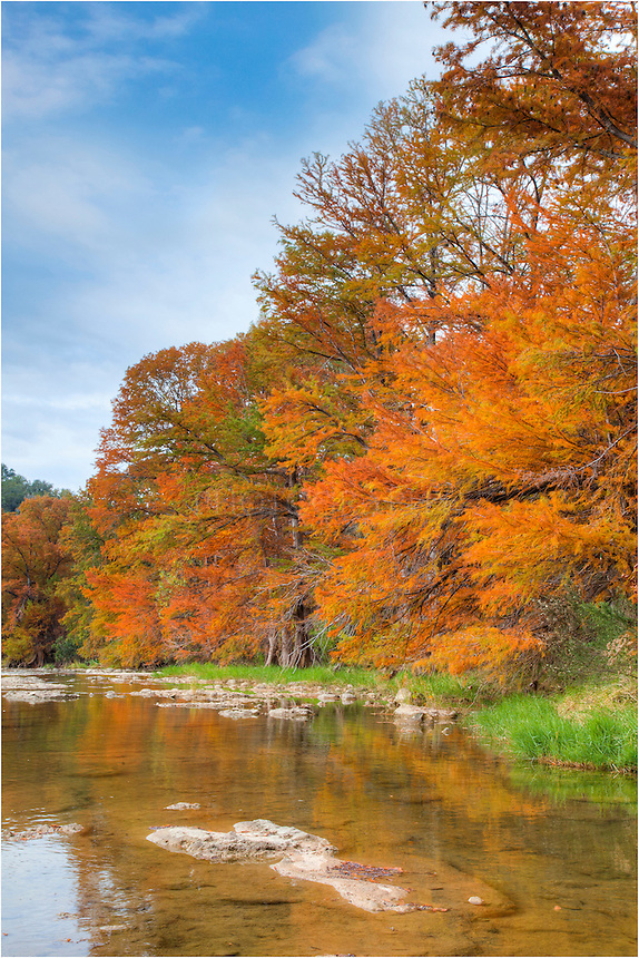 Pedernales Falls State Park in the Texas Hill Country offers great opportunities to photograph the changing colors of the cypress. Only a 45 minute drive from Austin, this little park has hiking trails and wonderful sights of those of all ages.