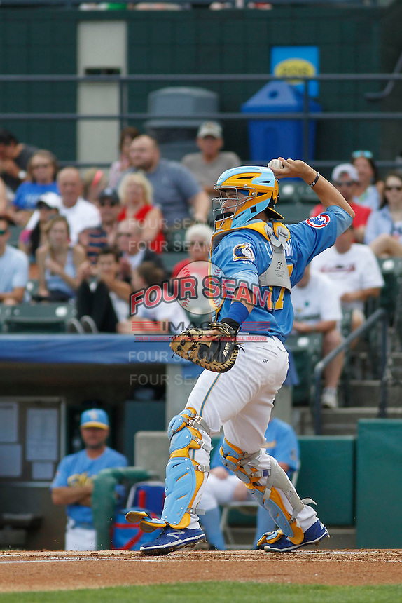Myrtle Beach Pelicans catcher Victor Caratini (17) behind the plate during a game against the Potomac Nationals at Ticketreturn.com Field at Pelicans Ballpark on May 25, 2015 in Myrtle Beach, South Carolina. Myrtle Beach defeated Potomac 3-0. (Robert Gurganus/Four Seam Images)