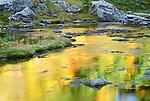 Mount Baker - Snoqualmie National Forest, Washington