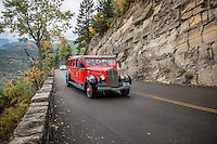 Red Jammers are buses used at Glacier National Park in the United States to transport park visitors. While the buses are called reds, the bus drivers are called jammers because of the sound the gears made when shifting on the steep roads of the park. The &quot;jamming&quot; sound came from the unsynchronised transmissions, where double-clutching was a must.<br /> <br /> They were manufactured as the Model 706 by the White Motor Company from 1936-1939. The distinctive vehicles, with roll-back canvas convertible tops, were the product of noted industrial designer Alexis de Sakhnoffsky, and originally operated in seven National Parks. Glacier National Park still operates 33 of their original buses today on the Going-to-the-Sun Road. <br /> <br /> Glacier's  Red Jammers were restored from 2000-2002 by Ford Motor Company in conjunction with TransGlobal in Livonia Michigan to run on propane or gas to lessen their environmental impact. The bodies were removed from their original chassis and built upon modern Ford E-Series van chassis. The original standard transmissions were also replaced in 1989 with newer automatics, removing the trademark &quot;jamming&quot; sound. <br /> <br /> This fleet of Red Buses is considered the oldest intact fleet of passenger carrying vehicles anywhere. These 17 passenger convertible touring sedans are more than a mere means of transportation for locals and visitors - they are cherished, elegant icons of Glacier National Park