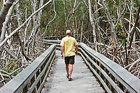 Park visitor hiking in Everglades National Park, Florida. M