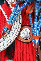 Salinas_MG, Brasil. ..Mercado Popular de Salinas, regiao norte de Minas Gerais. Na foto barraca vendendo equipamentos para montagem de cavalos...The Mercado Popular (Popular Market) of Salinas, the north region in Minas Gerais. In this photo the equipments for riding horse. ..Foto: LEO DRUMOND / NITRO