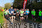 The runners take off at the start of of the Fossa NS 10k road race on Friday evening