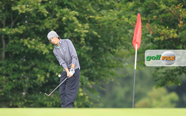 Ross Murphy-Sweeney (Connacht) on the 9th green during the Final day of the Boys Under 15 Interprovincial Championship at the West Waterford Golf Club on Friday 23rd August 2013 <br /> Picture:  Thos Caffrey/ www.golffile.ie