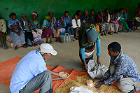 ETHIOPIA Taza Catholic Health Center , Kambata women receive maize seeds / AETHIOPIEN Taza Catholic Health Center, Kambata Frauen, Verteilung von Saatgut