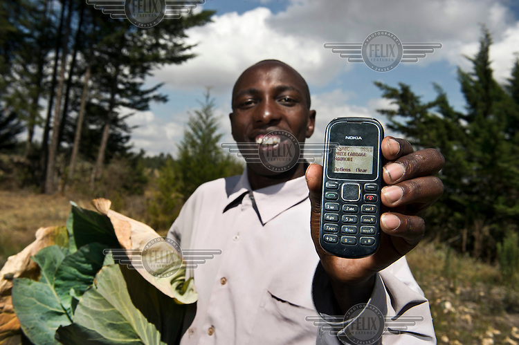 John Wahngombe, a farmer from Murugaru, Kinangop North, uses his mobile phone application M-Farm as he holds a cabbage. He can check product prices in Nairobi before selling his crops to the middle man. In this way middlemen can't cheat anymore by paying far below market prices.