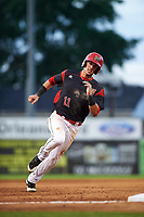 Batavia Muckdogs third baseman Tyler Curtis (11) running the bases during a game against the Lowell Spinners on July 11, 2017 at Dwyer Stadium in Batavia, New York.  Lowell defeated Batavia 5-2.  (Mike Janes/Four Seam Images)