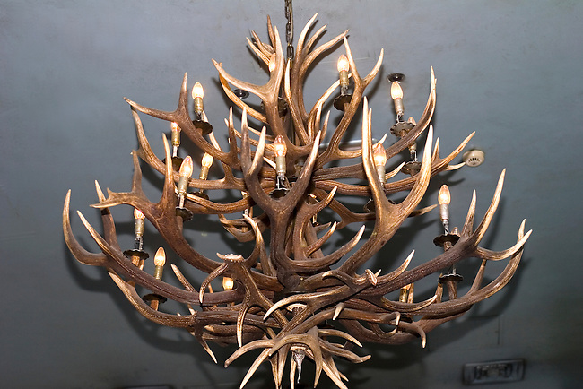 Interior, Antler Collection, Albannach Restaurant, Covent Garden, London, Great Britain, Europe