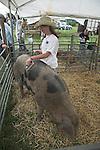 Teenage girl in pen with Sandy Black Oxford pig, Suffolk Smallholders annual show, Stonham Barns, Suffolk, England, July 2008