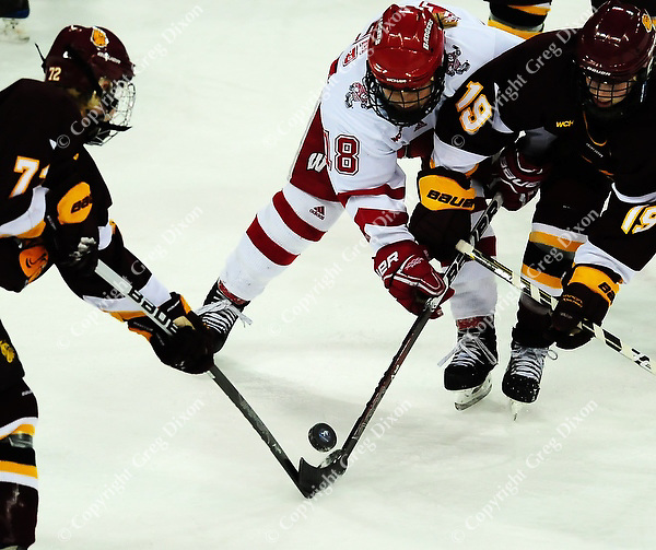 Badgers' Brianna Decker fights for the puck with Bulldogs' Elin Holmlov and Laura Fridfinnson (19), as the Wisconsin women's hockey team tops Minnesota-Duluth 2-1 to advance to the Frozen Four on Saturday, 3/12/11, at the Kohl Center in Madison, Wisconsin