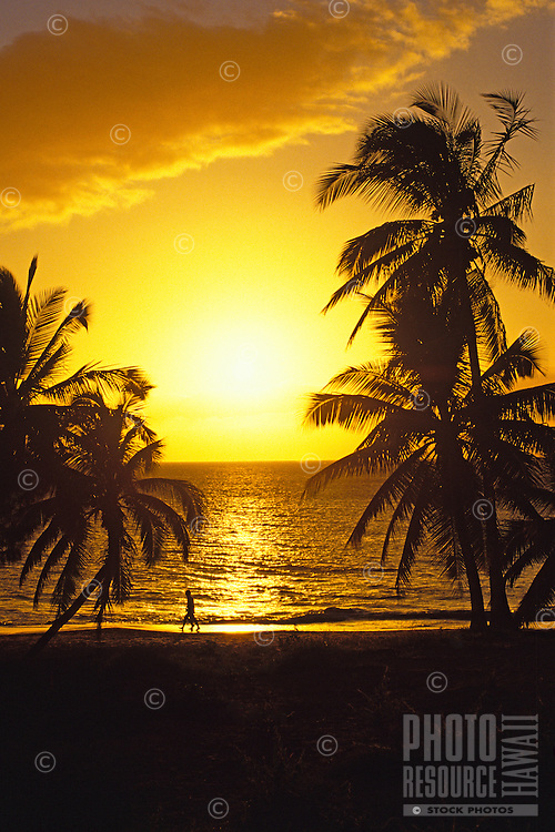 Two people walking the beach are silhouetted against a glorious Maui sunset with a large cloud above illuminated in gold. The dark silhouettes of palm trees frame either side of the walkers.